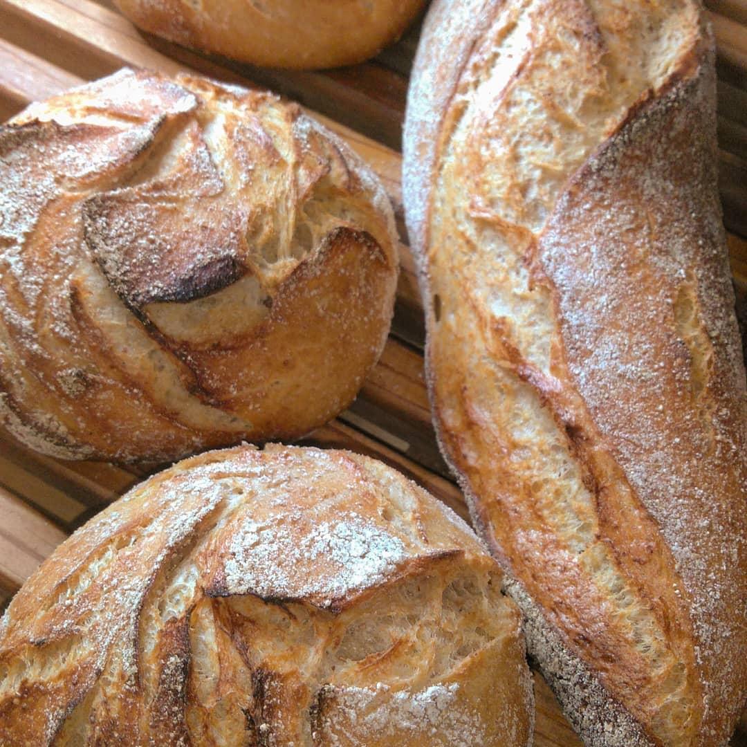 自家製酵母パン研究所tane-lab